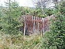Старое кладбище в Керети 2016_1